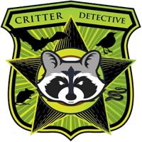Critter Detective | WiseIntro Portfolio