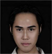 Yan Paing Oo, Web Master/ Social Media Executive | WiseIntro Portfolio
