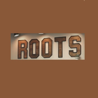 Roots Salon and Wellness | WiseIntro Portfolio