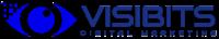 VISIBITS, VISIBITS at VISIBITS | WiseIntro Portfolio