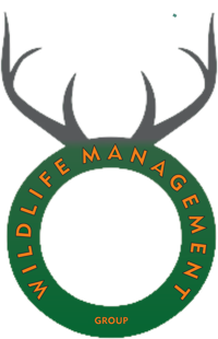 Wildlife Management Group | WiseIntro Portfolio