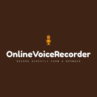 Online Voice Recorder, How to use Voice Recorder at onlinevoicerecorder.net | WiseIntro Portfolio