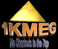 Char Knight-Dennis, MBA, CEO President at 1Knight Media & Entertainment Group | WiseIntro Portfolio