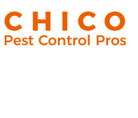 Chico Pest Control Solutions, Owner at Chico Pest Control Solutions   WiseIntro Portfolio