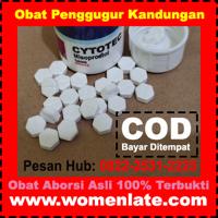 Jual Obat Aborsi, Obat Cytotec 400 Mcg 0822-2531-2225 Cara Menggugurkan Kandungan 1-8 Bulan at www.womenlate.com | WiseIntro Portfolio