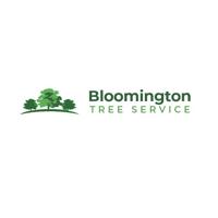 Bloomington Tree Service | WiseIntro Portfolio