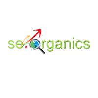 ס אי אורגניקס שיווק באינטרנט   WiseIntro Portfolio