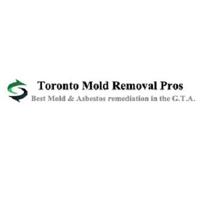 Toronto Mold Asbestos Removal Pros | WiseIntro Portfolio
