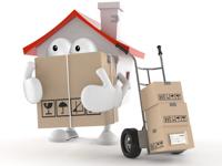 Sabi, Moving  Company at Top 5 | WiseIntro Portfolio